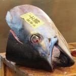 And a slightly grumpier looking tuna fish