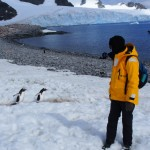 Avoiding STEPPING on penguins was an unexpected concern!