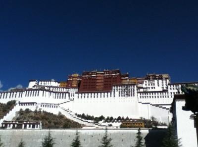Lhasa Lhasa Lhasa Lhasa Lhasa Lhasa Lhasa Lhasa...