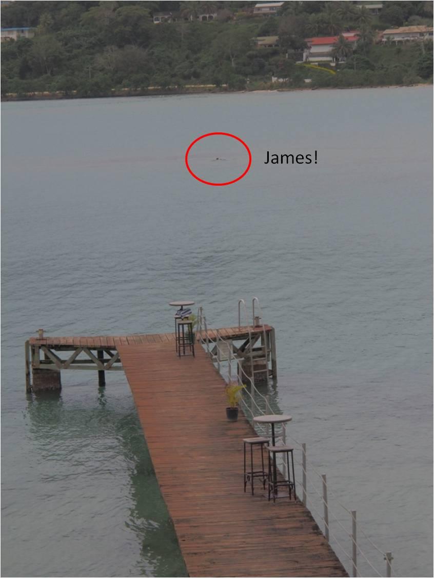 Short Runs In Strange Places Port Vila Harbour Around