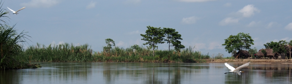 Another busy day on the Sepik River